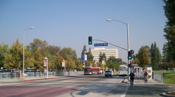 Car Free In Woodland Hills