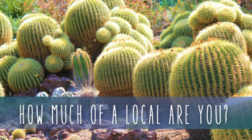 local-landmarks-special-cover copy