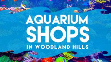 aquarium-shops-in-woodland-hills-cover copy