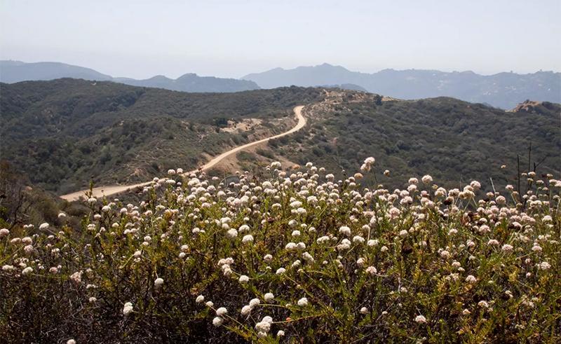 musch-trail-camping-near-woodland-hills