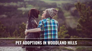 pet-adoptions-in-woodland-hills-cover copy