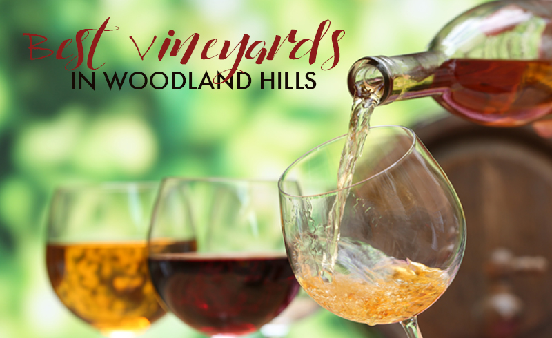 Some of the Best Vineyards and Wineries Near Woodland Hills