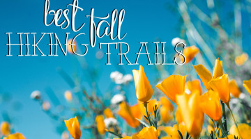 Best Fall Hiking Trails Near Woodland Hills