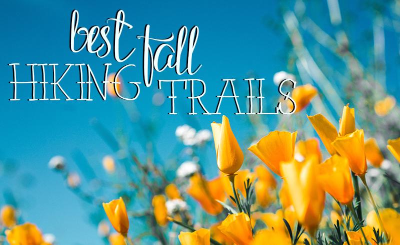 Best Fall Hiking Trails Near Woodland Hills